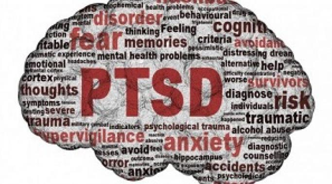 Trauma affects the brain differently in people who develop PTSD. But don't worry, recovery happens. Learn how PTSD sufferers' brains work when facing trauma.