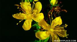 32 st johns wort healthyplace